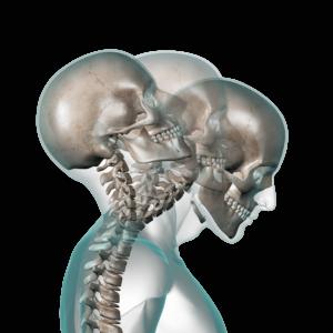 Esercizio-correttivo-Cranio