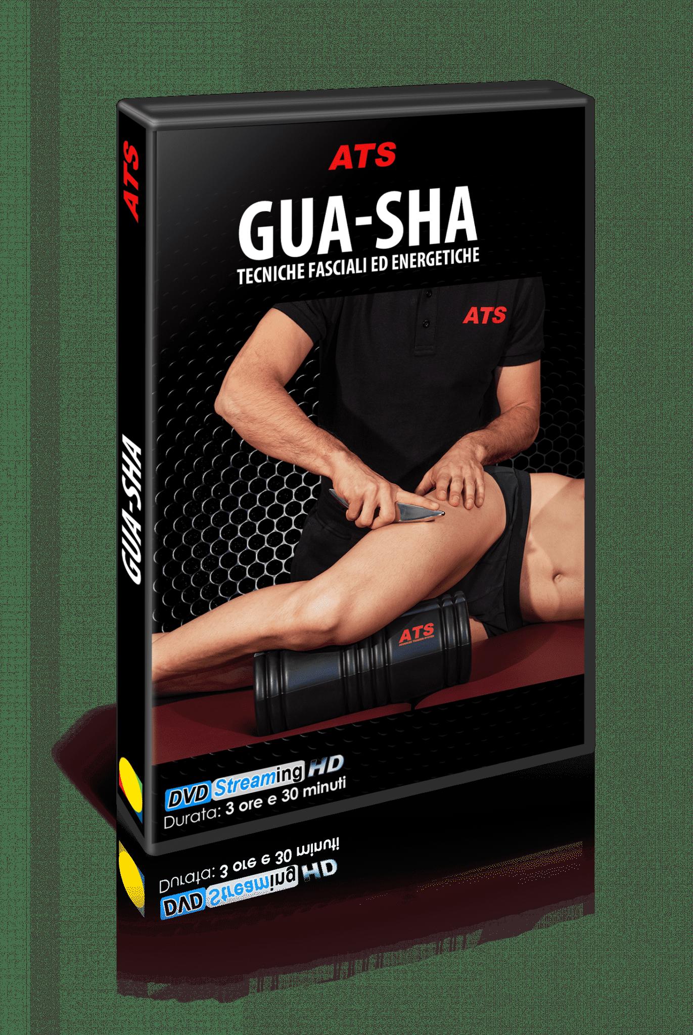 Cover Gua Sha
