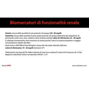 Biofunzionalità-Renale