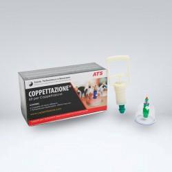 Kit 6 Coppette